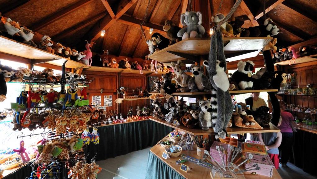 Boutique de la Réserve Zoologique de la Haute-Touche © MNHN - F-G Grandin