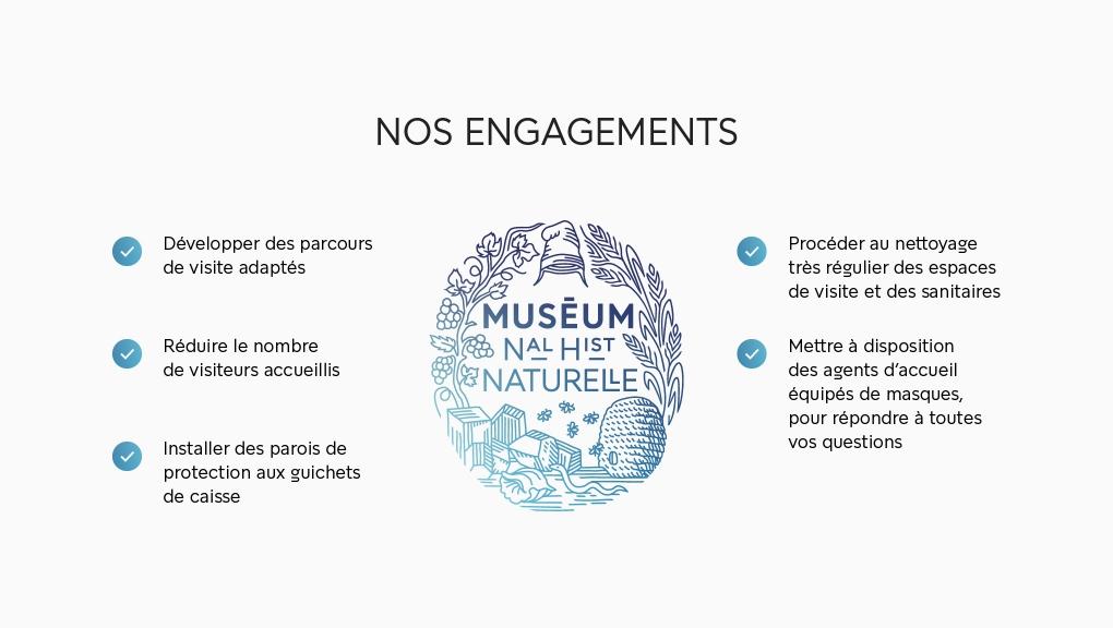 Engagements Muséum